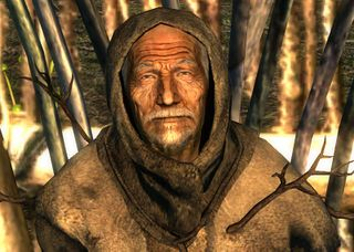 Treefather Birch.jpg