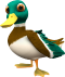 Duck pose01.png