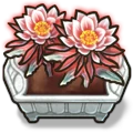Crop Dragonflower I plant.webp