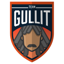 Team Gullitlogo square.png