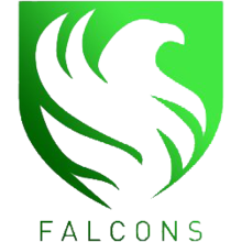 Falcons Esport (Saudi Arabian Team)logo square.png