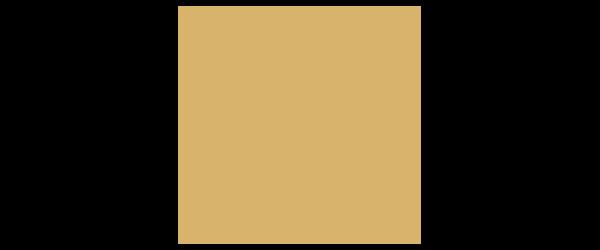 VENC Gaminglogo std.png