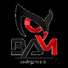 BAM eSportlogo square.png