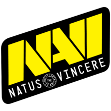 Natus Vincerelogo square.png