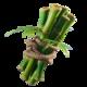 BambooBackBling.png
