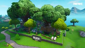 Tropical Treetops.jpg