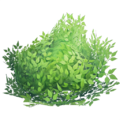 Consumable bush.png