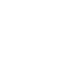 Shadow Boxer.png