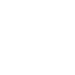 NinjaStyle.png