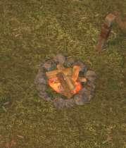 Env campfire.jpg