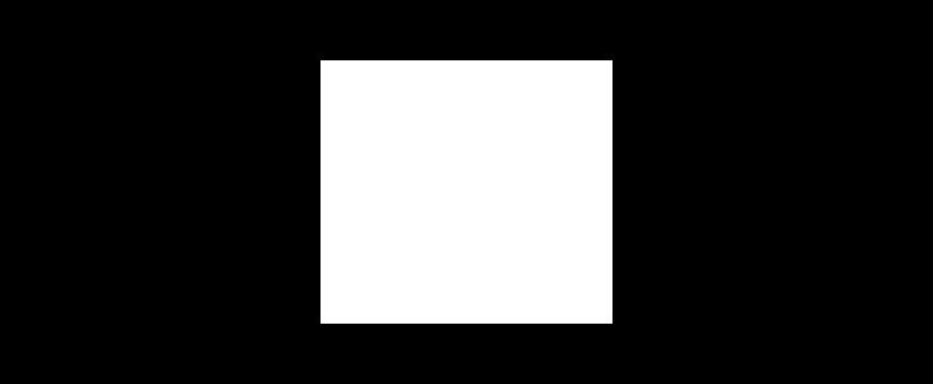 White Logo Header.png