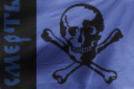 Pirates Flag.png
