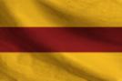 Pozna Battalion Flag.png
