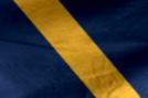 Alpha Forces Flag.png
