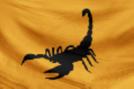 Desert Marauders Flag.png
