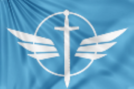 Valkyrie Female Fighters Flag.png