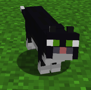 Wither Cat (EnderZoo) - Official Feed The Beast Wiki