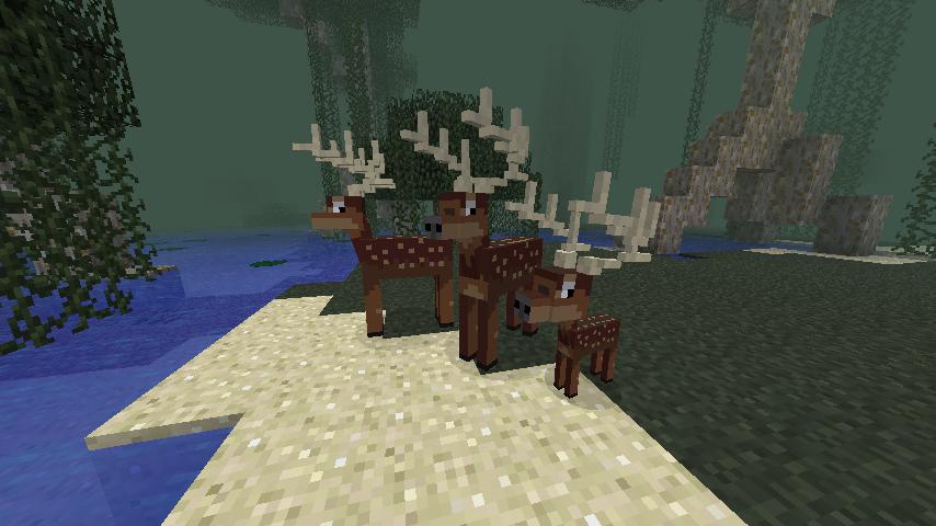 Wild Deer.png