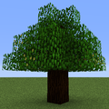 Tree Pear (Calculator).png