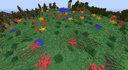 BiomesOPlenty Garden 1.jpg