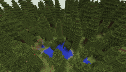 BiomesOPlenty Temperate Rainforest 1.png