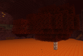 Tree Bloodwood.png