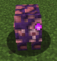 Tainted Pig.png