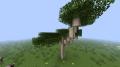 Eucalyptus N.png