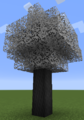 Tree Zorra.png