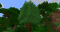 GT6 Cinnamon Tree.png
