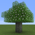 Tree Silverbell.png