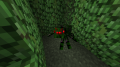 Hedge Spider.png