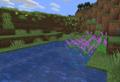 Purple pickerelweed.png