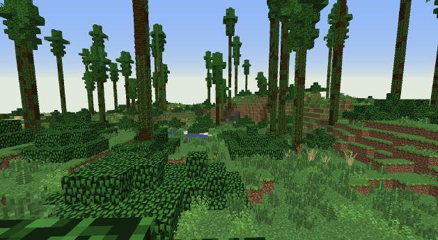 BiomesOPlenty Eucalyptus Forest 2.jpg