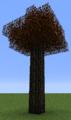 Tree Tigerwood.png