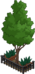 Fenced Tree.png