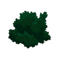 Yew Bush.png