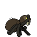 Spiderian action.png
