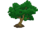 Large Tree.png