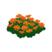 Orange Flower Bed.png