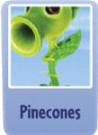 Pinecones.png