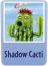 Shadow cactai.PNG
