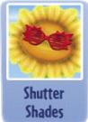 Shutter shades.PNG