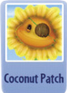 Coconut patch sf.PNG