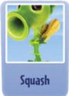 Squash.png