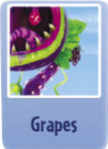 Grapes ch.PNG