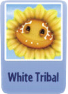 White tribal sf.png
