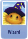 Wizard sf.png