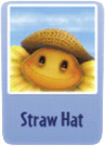 Straw hat sf.png