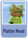 Platter head.png